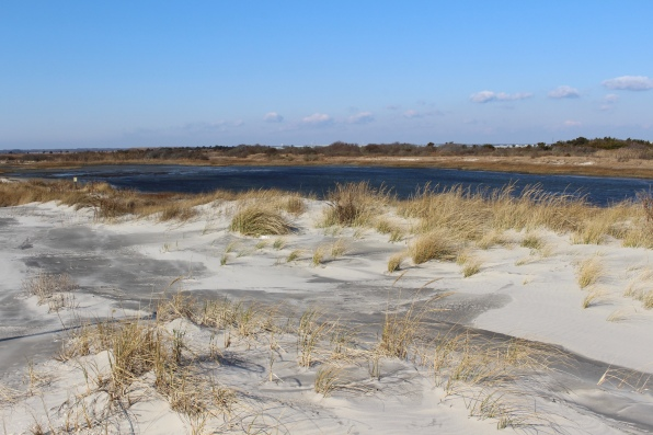 pond at Stone Harbor