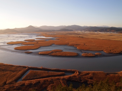 Suncheon Bay, South Korea 2010