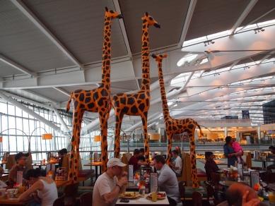 Heathrow Airport June 2013