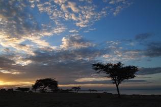 Lake Langano, Ethiopia 2012