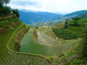Longji Rice Terraces, Guangxi, China 2015