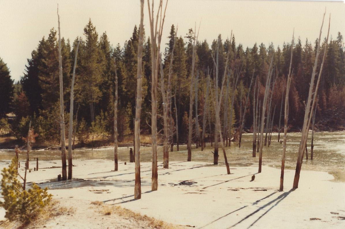 Sour Lake 10/10/79
