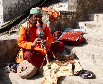 Snake charmer - Rishikesh, India