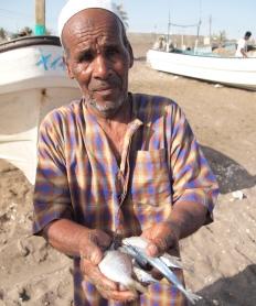 Fisherman - Al Musanaah, Oman