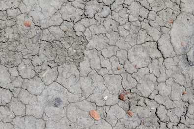 parched ground at Bisti/De-Na-Zin Wilderness