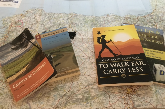 guidebooks & packing books