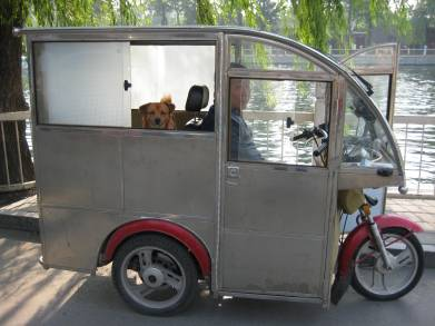 man and dog in odd vehicle at Houhai Lake