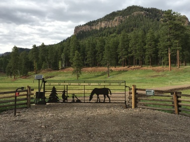 Bojack Ranch near Pagosa Springs, CO