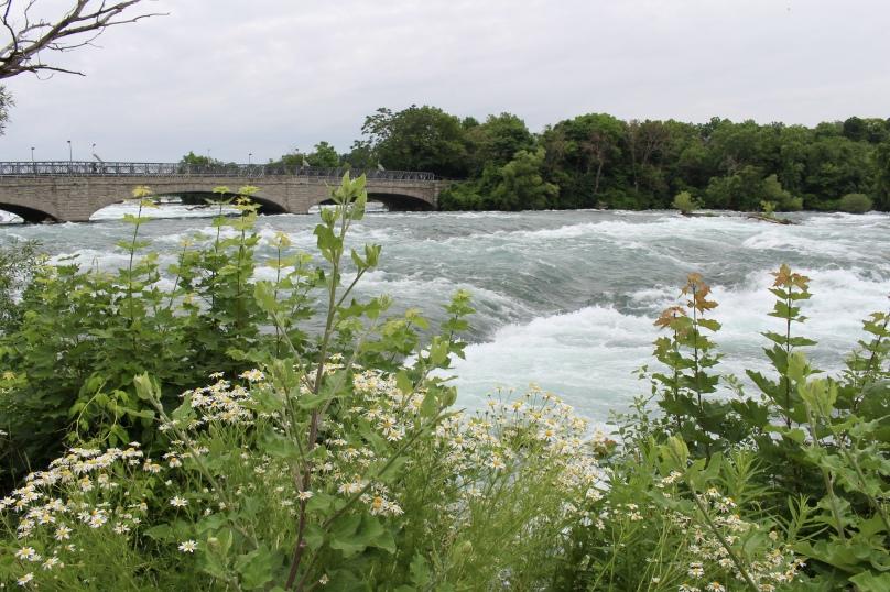 Niagara River going toward American Falls