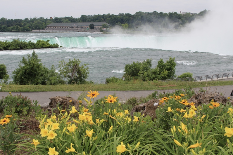 view of Horseshoe Falls from Terrapin Point