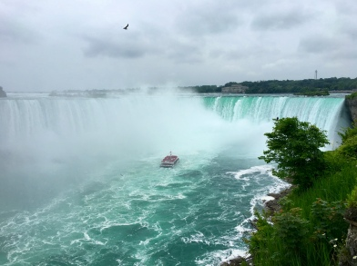 Hornblower Cruise & Horseshoe Falls