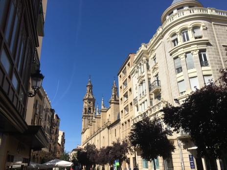 approaching Catedral de Santa María de la Redonda