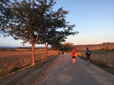 Pasarela to Parque de la Grajera