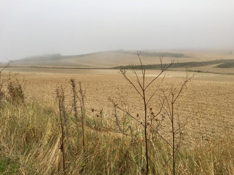 Espinosa del Camino to Villafranca de Montes de Oca