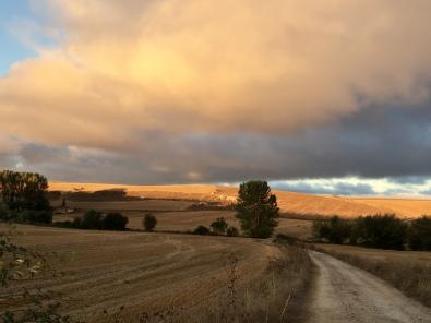 Hornillos del Camino to Arroyo San Bol 2018