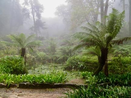 Parque da Pena