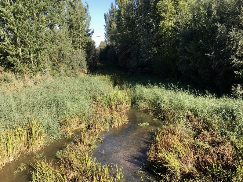 río Ucieza