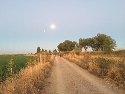 leaving Boadilla del Camino