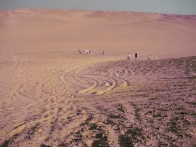 Cairo Hash House Harriers walking in the desert