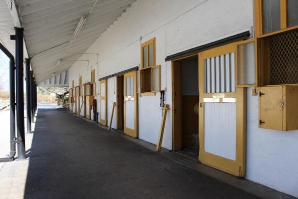 barns of stallions