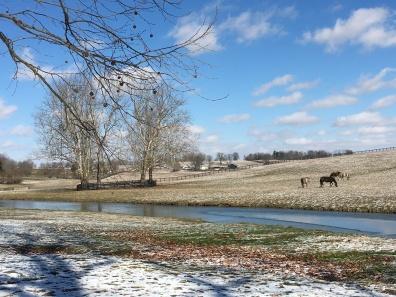 Claiborne Farm