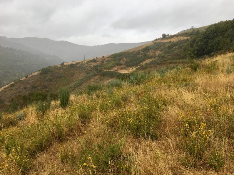 La Faba to Laguna de Castilla