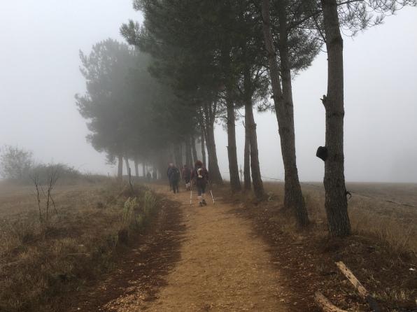 Portomarín to Gonzar