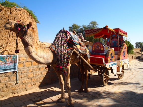 Camel carriage in Gadi Sagar