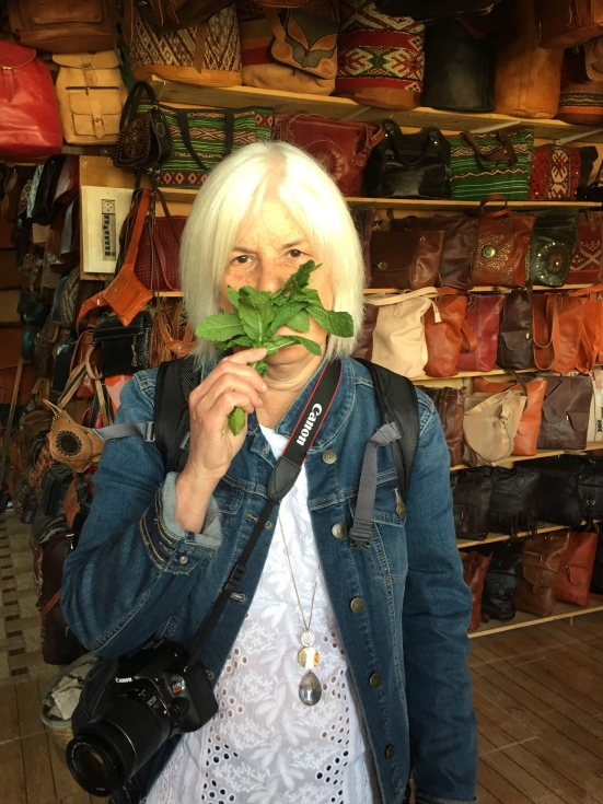holding mint to my nose at the Fez tanneries