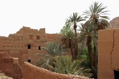 oasis at Tinghir