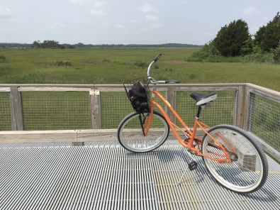 bicycling in Cape Henlopen State Park
