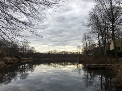 a cloudy walk around Lake Newport