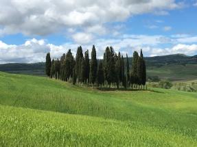 Tuscan countryside near San Quirico d'Orcia
