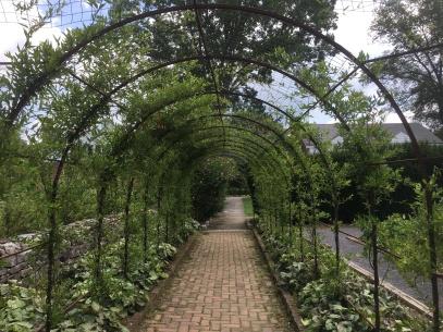 Glen Burnie Gardens at MSV