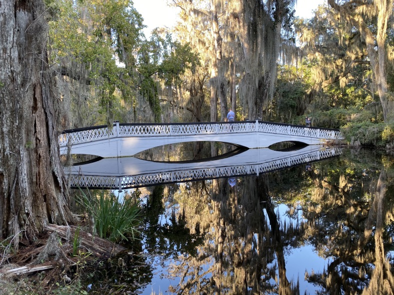 Magnolia Plantation & Gardens in Charleston