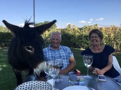 Simon and Karen and a donkey friend