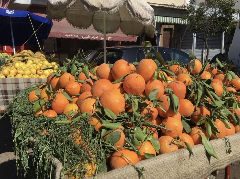 oranges at Quartier des Habous