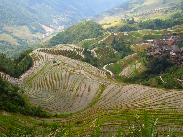 zoom out - Longji Rice Terraces, China