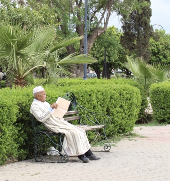 man reading in the gardens of Koutoubia Mosque
