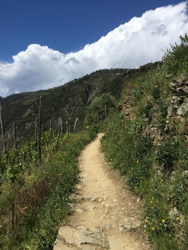 the Manarola Vineyard Walk