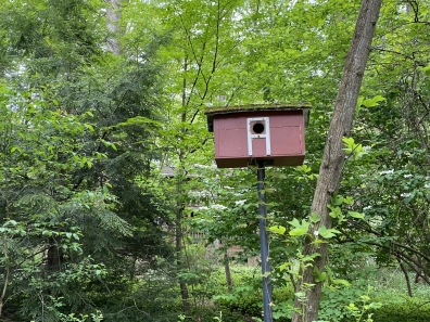 a birdhouse along the Glade Trail