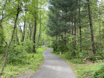 The lower Glade Trail