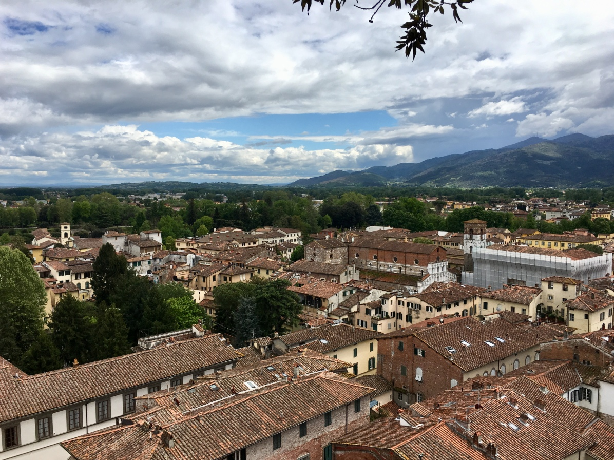 view of Lucca from Torre Guinigi