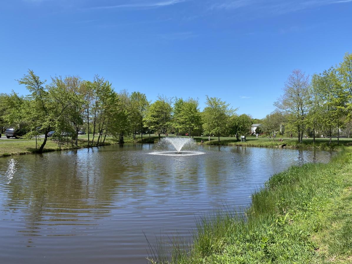 pond at Franklin Farm