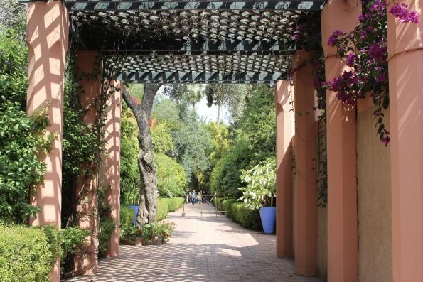 a peek at Jardin Majorelle