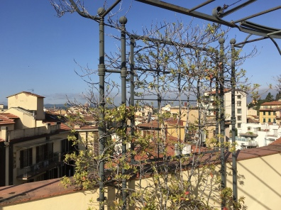 """Terrace with a View"" apartment in Florence"