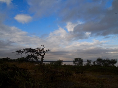 Lake Langano after sunrise