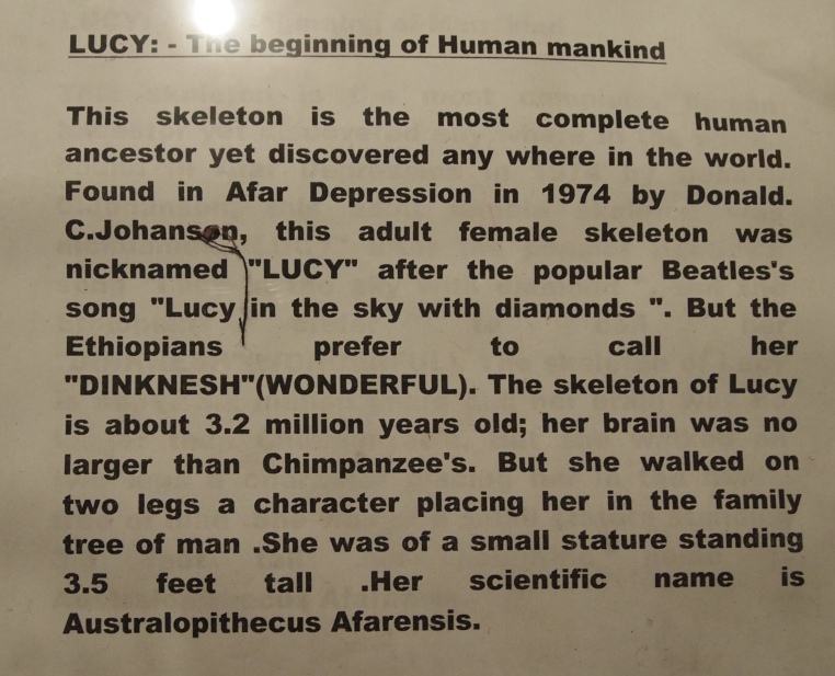LUCY: The beginning of human mankind