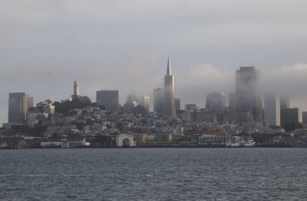 Fog-enshrouded San Francisco 2014