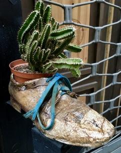 shoe planters in Montepulciano
